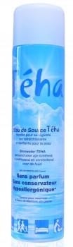 Atomiseur d'eau Teha 150 ml