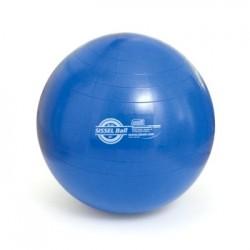 Retrouvez notre espace ballons tapis de gym sur for Housse ballon yoga